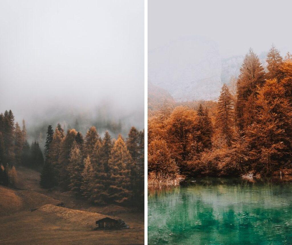 scattare-foto-in-autunno-nebbia-01
