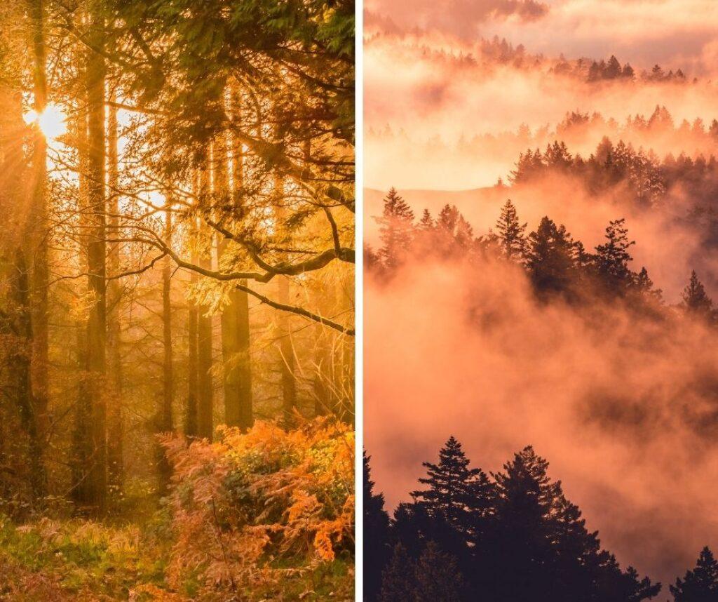 scattare-foto-in-autunno-suggerimento