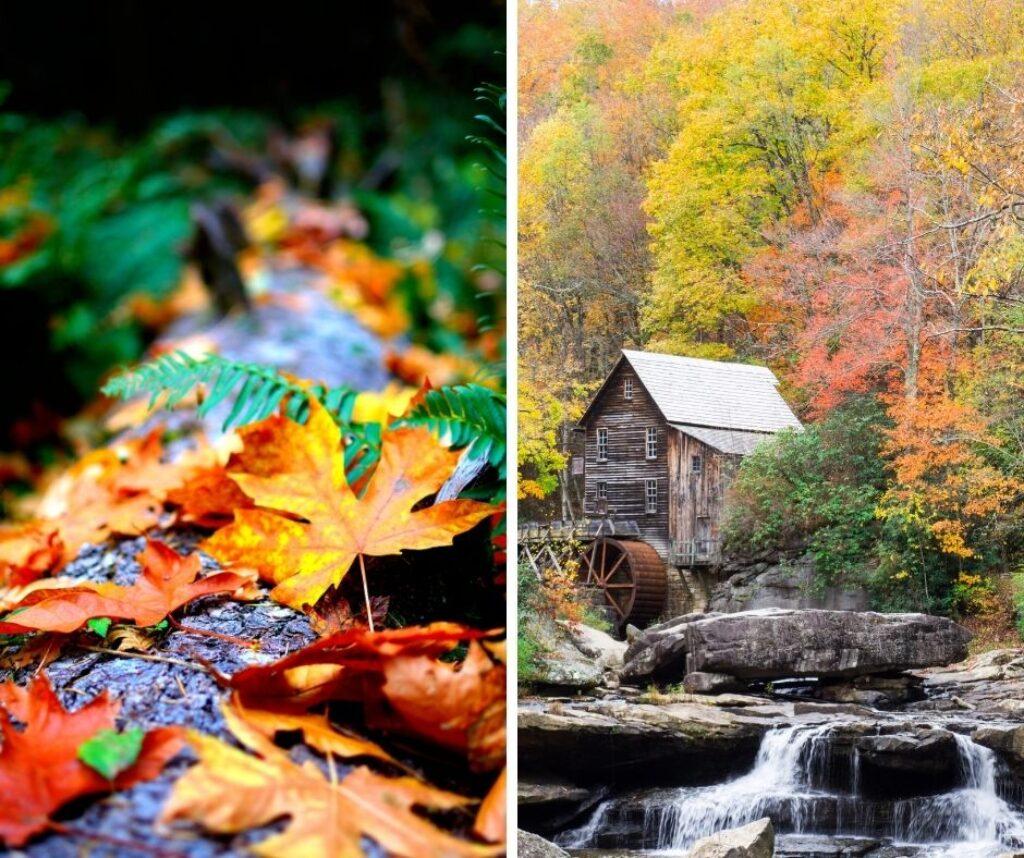 scattare-foto-in-autunno-suggerimento-colori-01